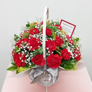 EV110541 싱싱 레드카네이션+안개혼합 ( 20송이 )