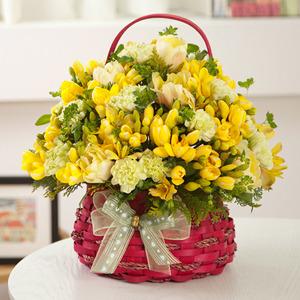봄의꽃후리지아